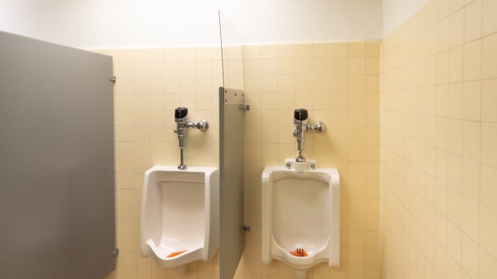 Plexiglass shields in restrooms